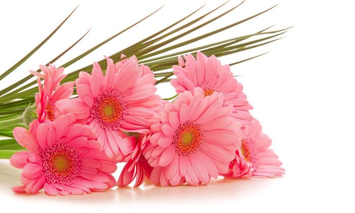گل برای تو